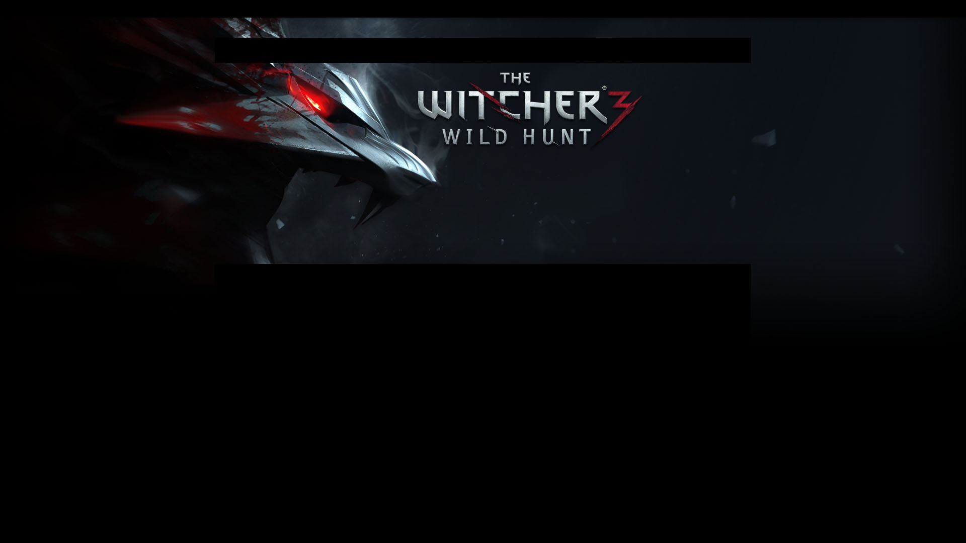 Witcher 3: Wild Hunt video game
