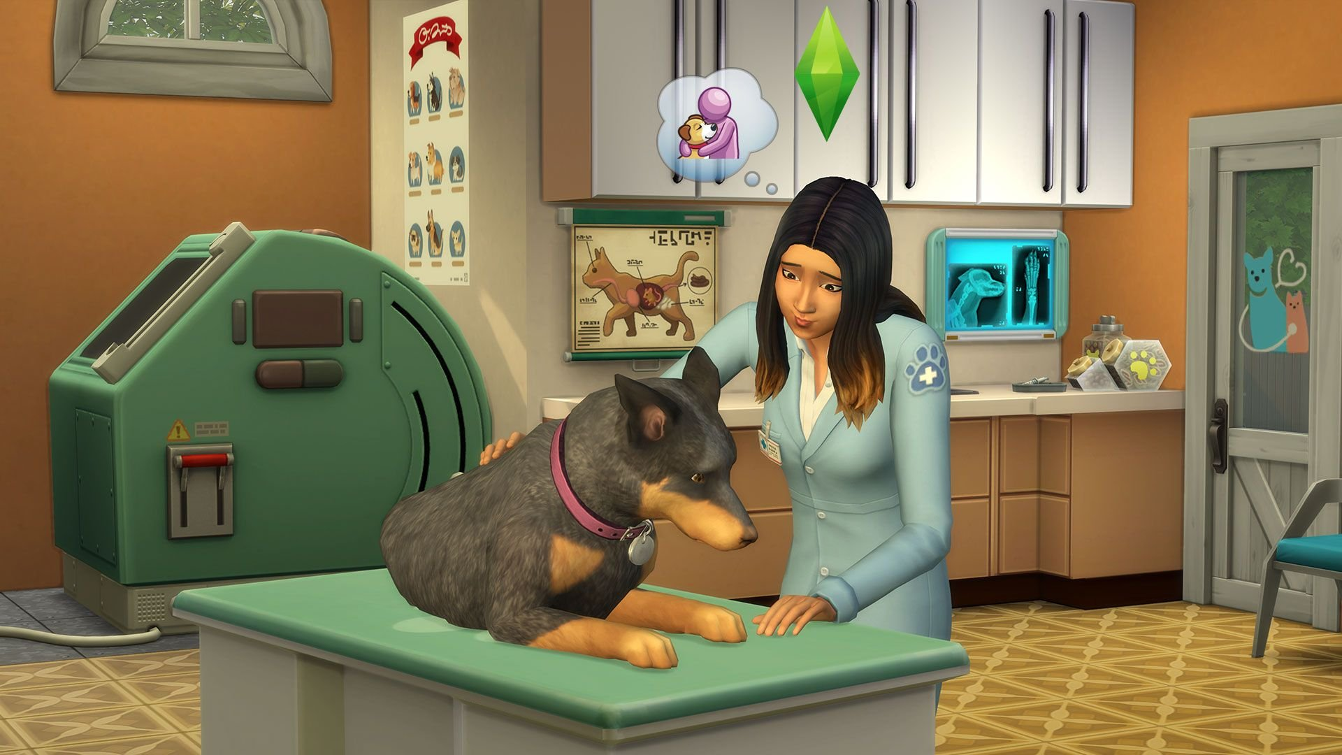 Sims  Cats And Dogs Height