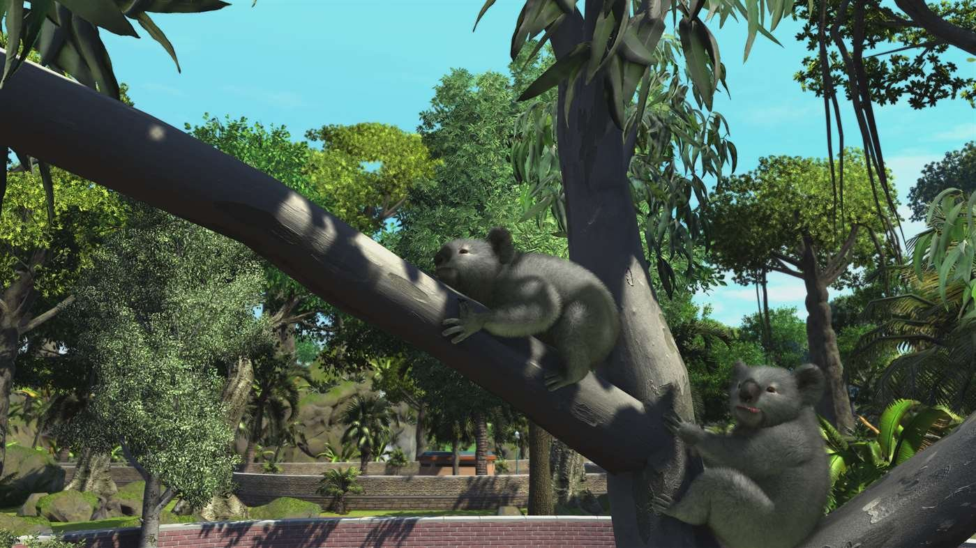 Buy Zoo Tycoon Ultimate Animal Xbox One Code in addition IpoDyS besides 222357280897 besides Camtasia Studio 8 Free Activation Key in addition 141029649098. on windows 7 ultimate product key purchase