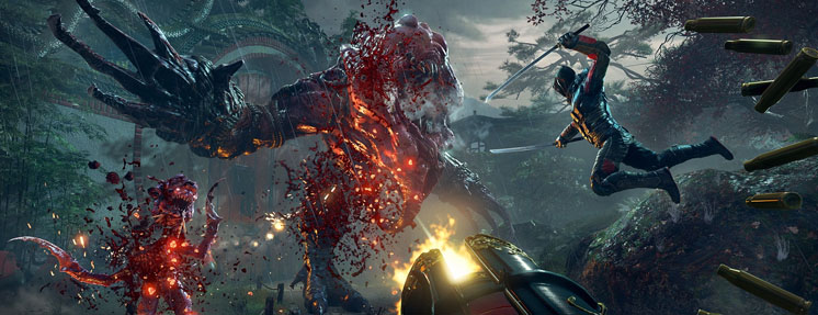 Shadow Warrior 2 Steam