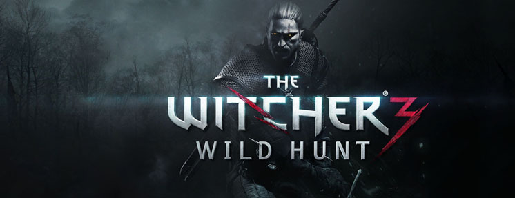 Witcher 3: Wild Hunt - Steam Steam