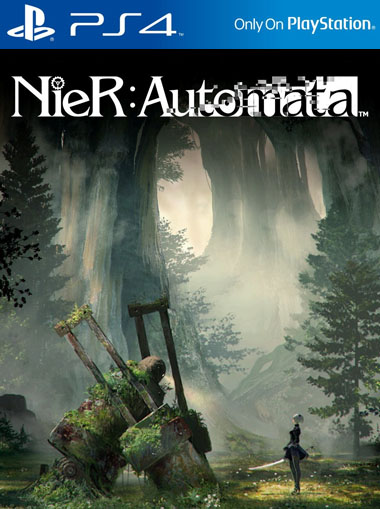 nier automata how to connect to network