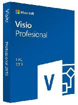 Buy Visio Professional 2019 MS Products Game Download